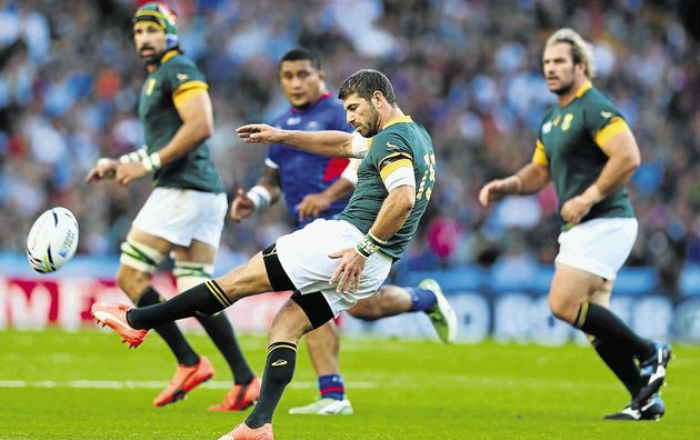 Springboks Rugby World Cup Le Roux