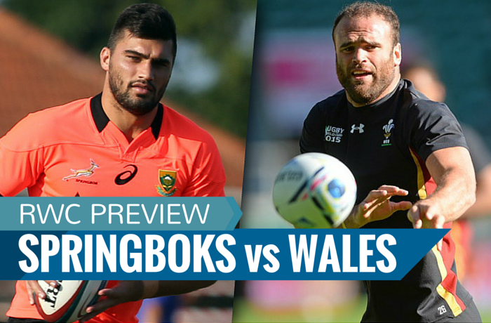 Springboks vs Wales preview