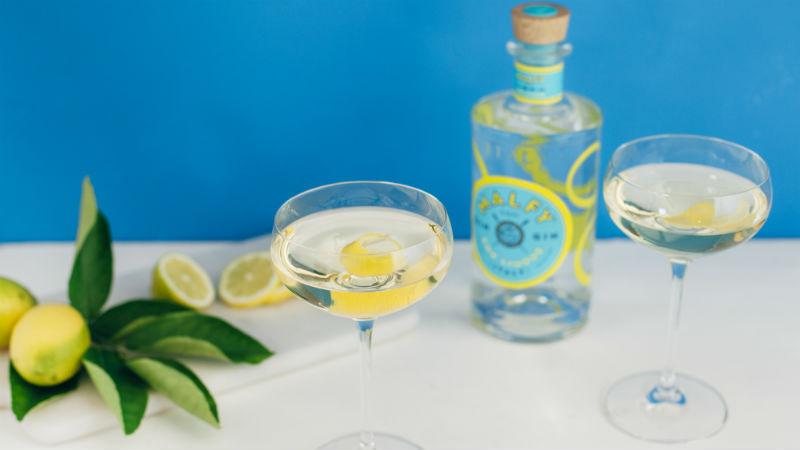 Malfy Italian gin header 2