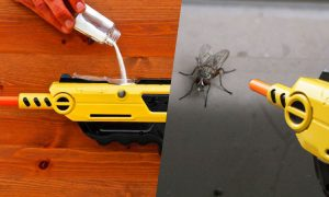 Bug a Salt Salt Shotgun for flies