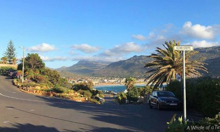 Fish Hoek pic Whale of a Time